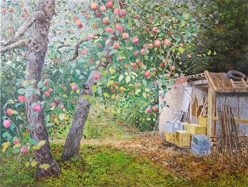 リンゴ農園、実りの風景
